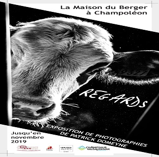 "Exposition ""Regards"""